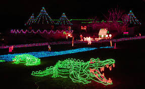 oregon zoo lights 2017 daily insider zoolights open nov 24 at oregon zoo