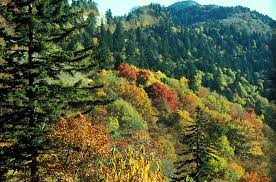 North Carolina National Parks images Great smoky mountains national park north carolina u s a jpg