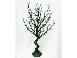 manzanita trees ya ya 30 vogue manzanita centerpiece tree size