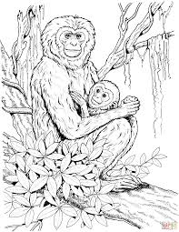 gibbon mother with baby coloring page free printable coloring pages