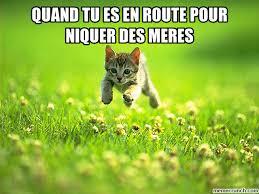 Mere Cat Meme - tu es en route pour niquer des meres