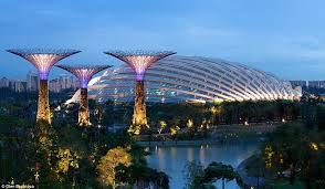 gardens by the bay supertrees of singapore light up night sky