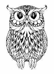 first rate coloring page owl 17 best ideas about colorful owl 2017