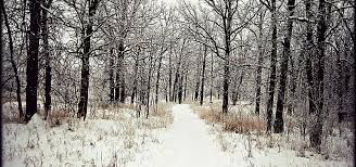 backgrounds for photography photography winter background photography winter snow