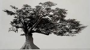 charter oak adam niklewicz inhabitat green design innovation