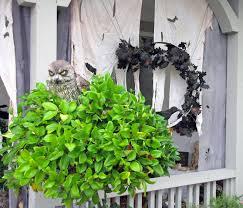 What Is A Topiary Halloween Porch Destashio