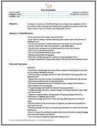 profile exle for resume sle resume professional profile exle accounting 28 images pdf