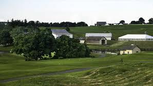 olde homestead golf club