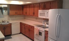 How To Paint Kitchen Cabinet Doors by How To Repaint Kitchen Cabinets Ideas All About House Design