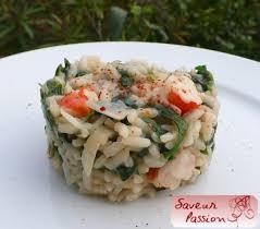 ortie cuisine l ortie à toutes les sauces soupe oseille et risotto aux