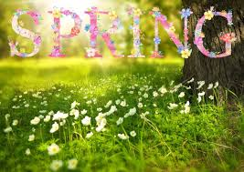 Spring Garden Ideas Good To Grow Spring Gardening Ideas Ktep