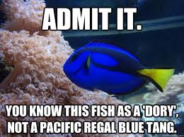 Dory Memes - admit it you know this fish as a dory not a pacific regal blue