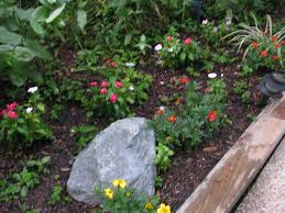 flower garden plans for beginners backyard landscaping ideas small budget design pool back yard