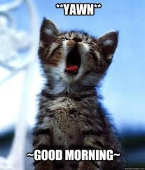 Good Morning Meme Pics - good morning meme cute lekton info