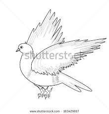 sketch flying gull stock vector 587956652 shutterstock
