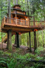 treehouse homes for sale tree house plus normal one for sale in woodinville seattlepi com