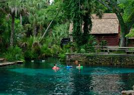 thanksgiving camping california ocala national forest juniper springs take me there pinterest