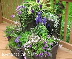 fill thrill and spill 30 creative garden container ideas hometalk