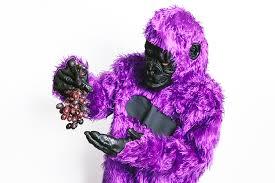 Halloween Grape Costume Show Favorite Strain 8 Halloween Costume Ideas