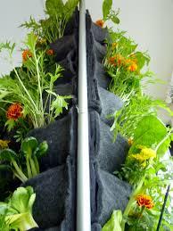 Verticle Gardening by Vertical Vegetable Gardening Vegetable Garden With Vertical