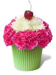 cupcake flowers cupcake in bloom flowers miami flowers same day delivery