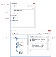 xtragrid layout view customization form form layout managers winforms controls