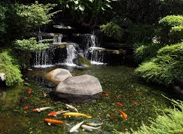Backyard Pond Ideas With Waterfall Fabulous Backyard Koi Pond Ideas Combined With Small Waterfalls
