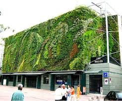 79 best green roofs walls images on pinterest vertical gardens