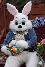 easter bunny easter bunny coming soon to county mall forked river gazette