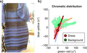 the most reasonable explanation of u201cthe dress u201d implicit