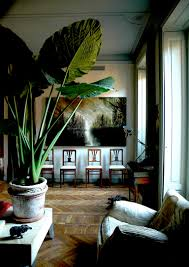 large leafed elephant ear adds drama decorating with plants