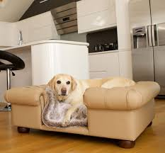 Leather Sofa And Dogs Sofa Beds Sofas And Chairs Lifestyle Black