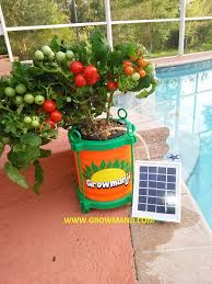 amazon com growmanji solar powered hydroponic system dwc
