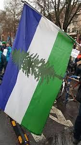 doug flag
