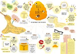 Cooking Infographic by Health Benefits Of Honey Infographic La Dolce Vita Cooking Book