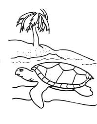 turtle coloring pages of sea animals animal coloring pages of