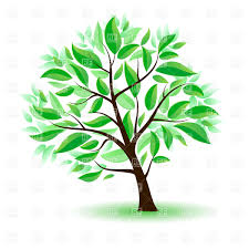 cartoon tree with green leaves vector clipart image 8420 u2013 rfclipart