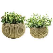 Decorative Indoor Planters Buy Decorative Indoor Planters From Bed Bath U0026 Beyond
