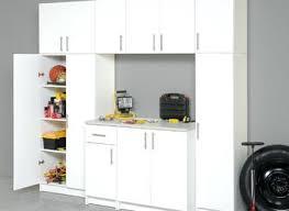 flammable cabinet home depot home depot cabinet best kitchen childcarepartnerships org