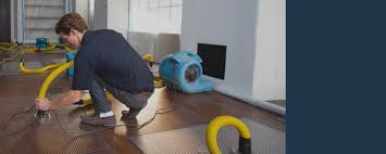 on call restoration baltimore md mold removal baltimore