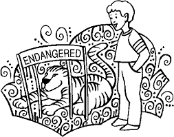 zoo boy and lion endangered coloring page wecoloringpage