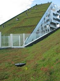 Green Homes Designs Top Green Roof Designs Buildipedia