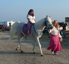 halloween horse halloween trail ride and horse costume contest at brockdale oct 30