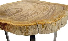 Petrified Wood Bench Petrified Wood Side Table Roundimpact Imports
