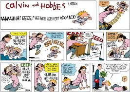 calvin and hobbes by bill watterson for jan 29 2012 humour