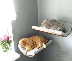 cat wall furniture cat wall shelves oval wall bed cat shelves cat furniture by cat