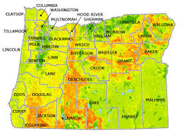 a map of oregon fires susan polgar global chess daily news and information oregon