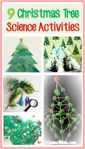 9 tree science activities for