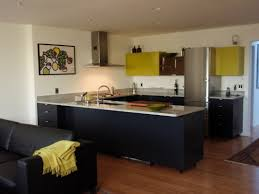 Urban Design Kitchens - tag for modern urban kitchen design even though some of the