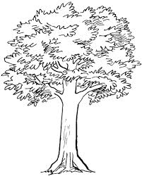 simple tree drawing pencil art drawing